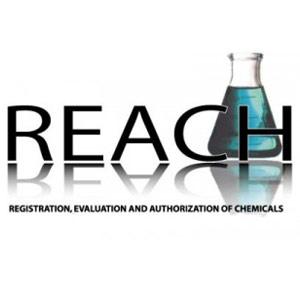 REACH-1