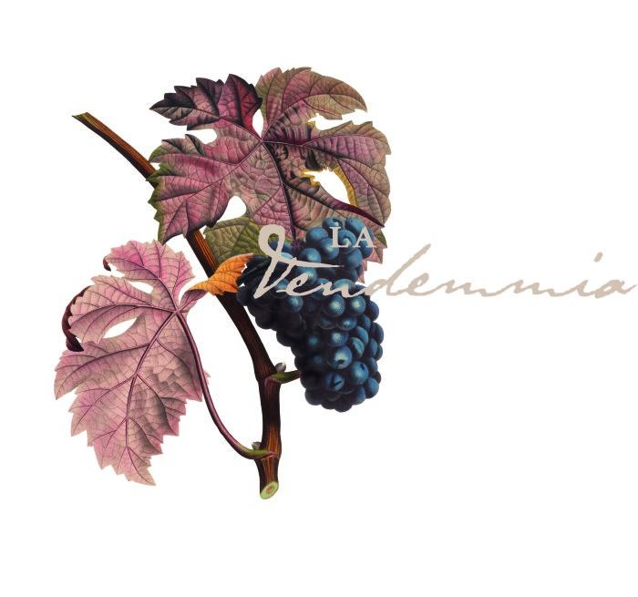 00_PS_LA-VENDEMMIA_Logo