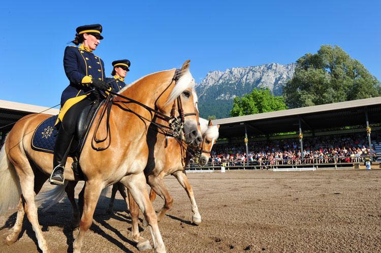 spettacolo-cavalli-c-Fohlenhof-Ebbs-Christian-Kapfinger-